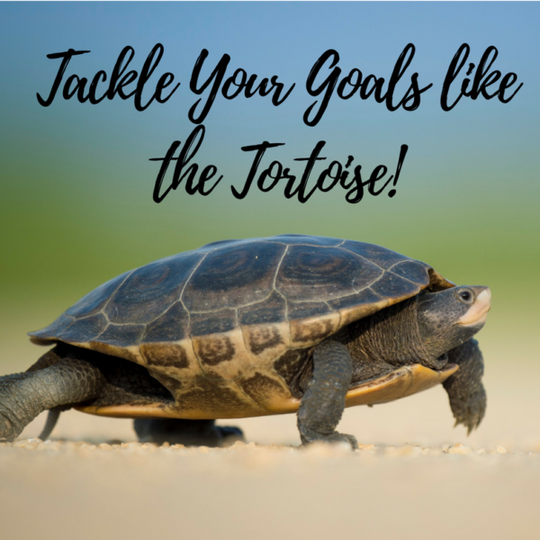 Tackle your Goals like the Tortoise!
